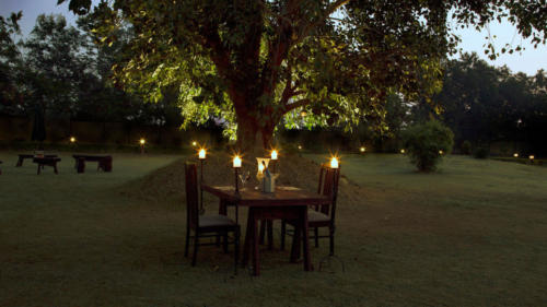 Bush-dinner-unedited2