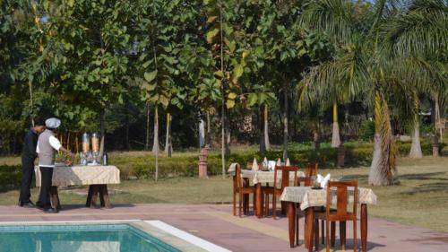 Poolside-Meal